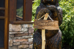 Moggie the Bear Welcomes You